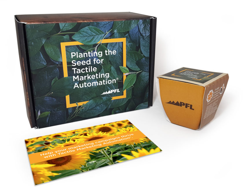 The Plant a Seed Kit leaves a branded, interactive reminder on your recipient's desk.